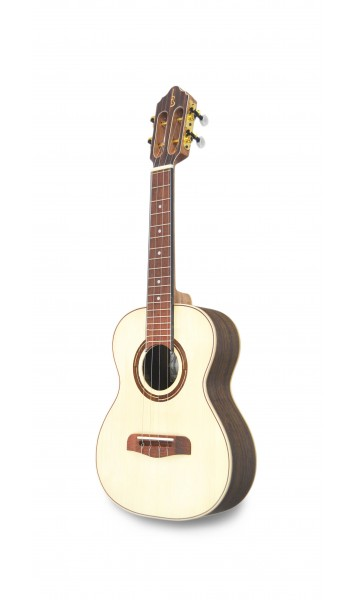 CV Luthier